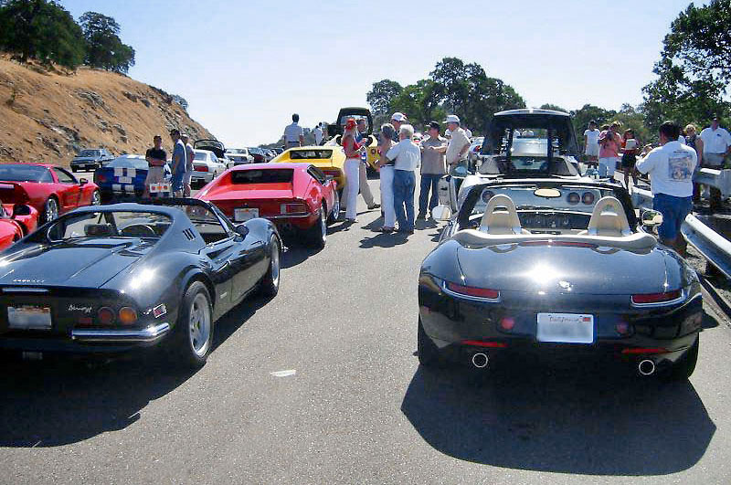 Ian's Zee out with a wonderful selection of exotics. (IM.2002)